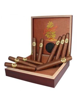 10 Bauza Cigars and Travel Humidor